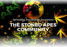 The Stoned Apes